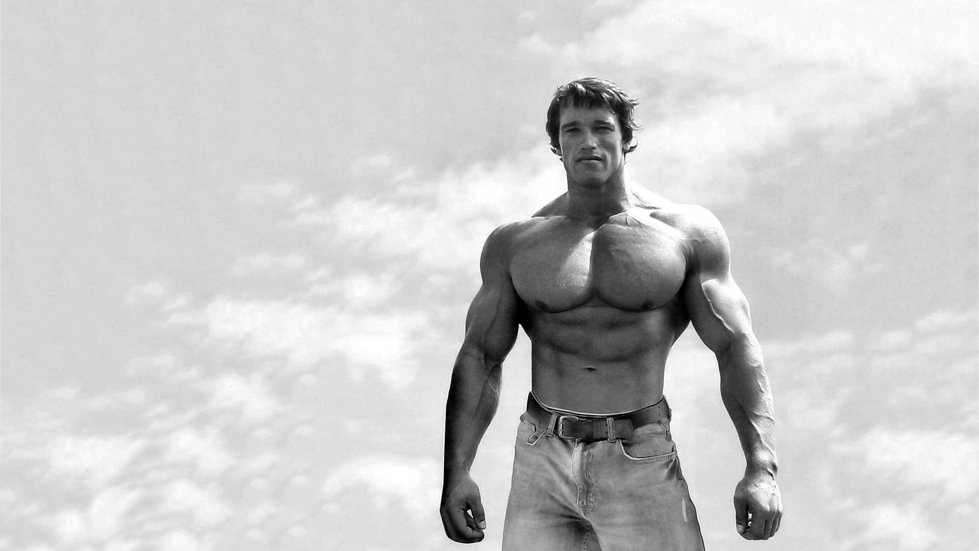 Arnold The Original